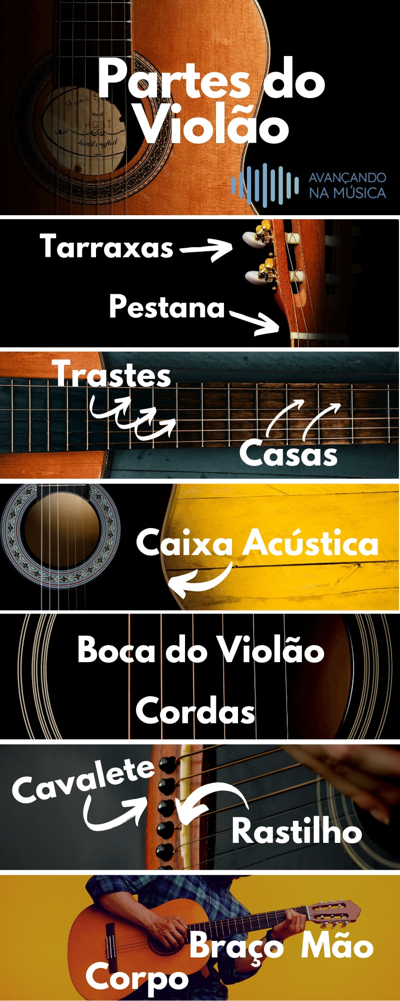 Infográfico Partes do Violão Para Iniciantes Aprender a Tocar